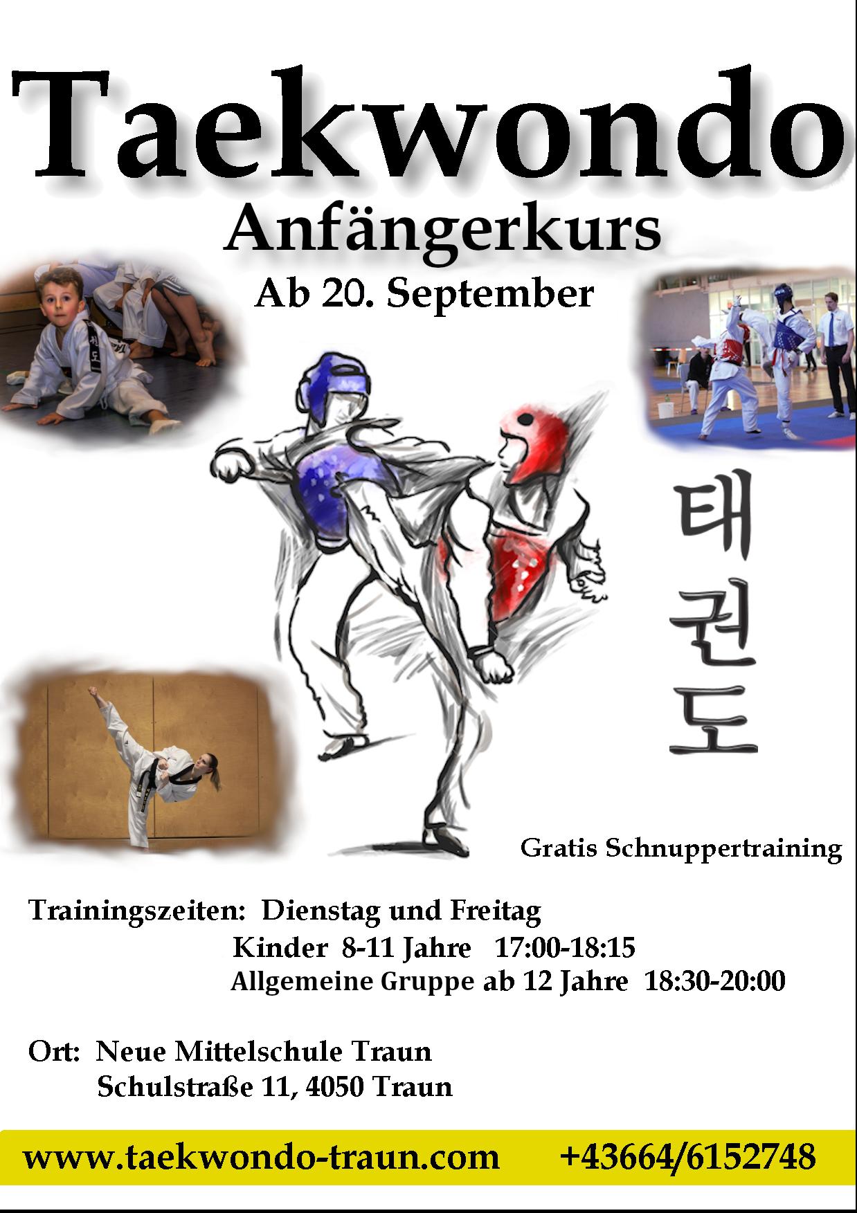 Taekwondo Anfängerkurs & Trainingsstart 2021/22